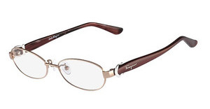 Salvatore Ferragamo SF2507A 601