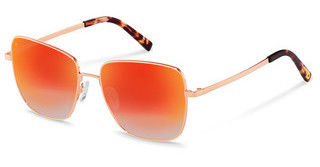 Rocco by Rodenstock RR109 A rose gold, havana